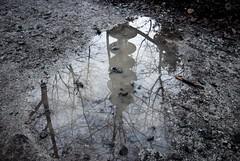 Pfutze (cb-zoom l Christian Becker-Fotografie) Tags: blackandwhite tower water rain photography nikon wasser fotografie reflect hd heidelberg turm spiegelung regen pftze knigstuhl schwarzweis nikond60