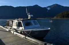 Pitt River Water Taxi  - Pitt Lake ( Peterson Photogr@phy  Happy Valentines Day!) Tags: lake canada water docks boats pier britishcolumbia mooring mapleridge pittlake boatdock pittriver pittpoulder nikond5200 pittlakemarina nikonafs18140mmf3556edvr pittriverwatertaxi