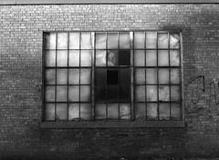 Brick and Glass (karstenphoto) Tags: white black brick 120 mamiya film window glass analog 645 kodak tmax michigan steel zeeland iso medium format 100 feelthezeel