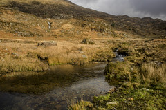 Afon y Cwm (wynn_owen) Tags: nationalpark nationaltrust eryri eryryi