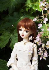 Layla - Small Flowers (radioactive alchemist) Tags: flowers garden spring doll bjd layla celeste mirodollwind