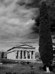 Nettuno (Soleapicco) Tags: italy clouds greek temple blackwhite italia paestum tempio greektemple