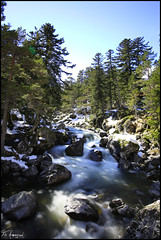 Le Gave (FloArmengaud) Tags: longexposure blue winter sky sun snow nature water river landscape pont espagne pyrnes cauterets nd400