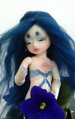 Azur (Blue Kitsune) Tags: doll bjd didi abjd bluefairy pocketfairy bodyblushing bjdtattoo