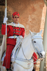 Guardia en Tour Hassan (Pablo Rodriguez M) Tags: plaza tower torre tour guard morocco maroc hassan marruecos guardia rabat