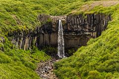 Svartifoss (jdelrivero) Tags: is iceland islandia lugares oriental cascada geologia paises svartifoss skaftafellnationalpark austurland
