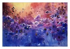 Last Rays (katekos) Tags: blue light sunset sunlight art floral watercolor painting gold purple watercolour cosmos kwiaty purpleandgold akwarela floralwatercolor katekos