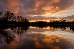 Groningen Stadspark at sunset (koos.dewit) Tags: sunset sun holland water reflections landscape cityscape fuji thenetherlands fujifilm groningen 2016 groningenstadspark koosdewit fujixe2 fujinon1024mm koosdewitnl