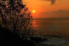 Menganti beach (anwarsiak***sibuk***) Tags: sunset beach indonesia jawa pantai kebumen menganti gombong