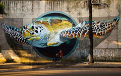Street Art Stories, the best unauthorized art in the world (PhotographyPLUS) Tags: pictures graphics photos illustrations images stockphotos articles footage stockimage freephoto stockphotograph