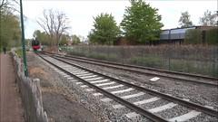 SCM Steamlocomotive type Hunslet Austerity N WD 75196 shunting in Eeklo. (Franky De Witte - Ferroequinologist) Tags: de eisenbahn railway estrada chemin fer spoorwegen ferrocarril ferro ferrovia