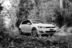 VW Golf (Kent Holloway) Tags: au australia tasmania leicam6 recherche fujiacros100 summicron35mm