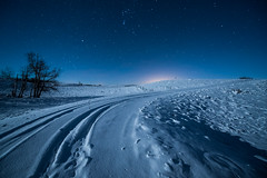 Winter Night (Sandra Herber) Tags: winter snow canada night stars alberta auroraborealis
