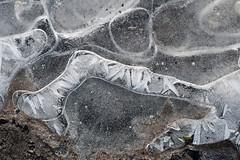 0 (Birgit Speulman) Tags: winter ice frost freezing heide ijs vorst natuurijs vriespunt dellebuurster