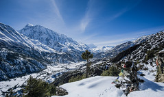 Valey from Gyaru, Nepal (Nicolas Bourque) Tags: trees nepal sky snow mountains clouds landscape tibet 12mm annapurna valey gyaru samyang rokinon a6000