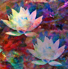 Lily Pond with Two Lilies (virtually_supine popping in and out) Tags: painterly water photomanipulation creative vivid textures waterlilies montage layers paintdaubs drybrush orton lilypond brightcolours digitalartwork fauvist picasa3 photoshopelements9 tmiinthestyleoffauvism