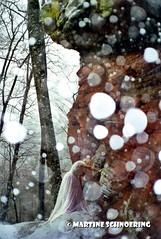 MS fe et rocher (vosgesphotos) Tags: neige fe rocher vosgesdunord