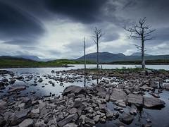 Loch Assynt (ShimmyGraphy) Tags: trees cloud lake tree clouds dark landscape see scotland highlands gloomy stones bald wolken berge steine loch landschaft bäume dunkel schottland felsen kahl hügel assynt lochassynt düster shimmygraphy