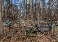 DSC08588.ARW-01 (juice95m3) Tags: abandoned rust vintagecar automobile junkyard oldcars classiccars