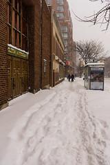 Snowstorm Jonas-6 (Diacritical) Tags: snow brooklyn iso800 pattern f45 29 jonas blizzard 2470mmf28 0ev nikond4 nikoncorporation sec secatf45 douglascpalmer2014 january232016 snowstormjonas