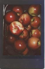 apples (dustinray) Tags: instax instaxmini fujifilminstax