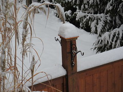 ...and it piled up... (jamica1) Tags: winter snow canada fence bc okanagan columbia british grasses kelowna rutland