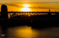 Golden Sunrise (Thanks For Your Kind Support) Tags: bridge sea sky sun water architecture sunrise canon reflections ship sydney australia circularquay nsw 1855mm operahouse hdr sydneybridge kevinwalker canon1100d