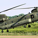 CH-47 Chinook - RIAT 2014