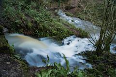Confluence (Stuart.67) Tags: longexposure mill woodland woods nikon stream d800