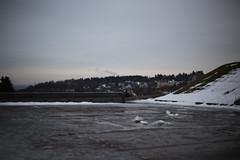 IMG_2512 (Olegasphoto) Tags: 50mm f18 yongnuo