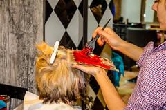 MISHA-HDR-27 (Hair Salon · Nail Salon · Barber Shop) Tags: baby beauty kids hair toddler hipster makeup latvia shampoo barbershop blond barber misha hairdresser hairsalon manicure pedicure perm henna nailpolish hairspray redhair hairstyle youngster blackhair hairproducts riga hairbrush hairgel hairdryer lotion nailart haircare brownhair hairwax personalcare nailsalon salons latvija hairwashing beautysalons cosmetology hairstyling makeupartist hairstraightening haircoloring hairclipper frizura hairroller hairconditioner skaistums hairiron hairmousse hairserum artificialnails skaisti humanhaircolor friezetava skaistumkopsana manikirs mishathebarber