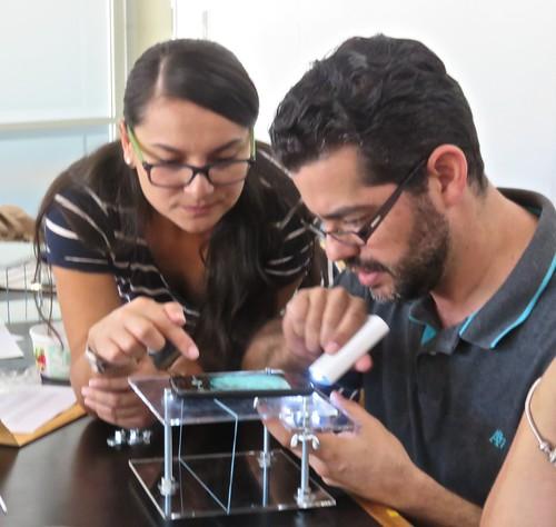 Taller de Miniscopio - Investigación del mundo microscópico