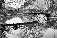 Refection (Lojones13) Tags: blackandwhite reflection water river bronxriver