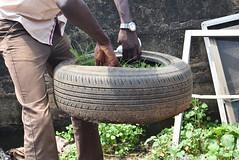 A MOBILE GARDEN. Ikorodu, 2015. (cadi.cliff) Tags: africa travel west kitchen garden state grow photojournalism lagos nigeria innovation activism socialchange ikorodu youthdrivenchange