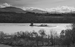 there's someone who definitely had enough of neighbours ... (lunaryuna) Tags: trees sky bw seascape water monochrome wales clouds season landscape blackwhite spring solitude cottage isolation snowdonia lunaryuna northwales menaistrait seastrait angleseyisland funyny