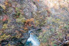 NarukoOnsen-44 (clouddra) Tags: autumn japan jp miyagiken narukogorge narukoonsen sakishi
