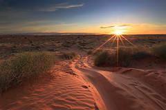 Simpson Desert Sunset (naomirw83) Tags: sunset landscape sand australia outback southaustralia simpsondesert