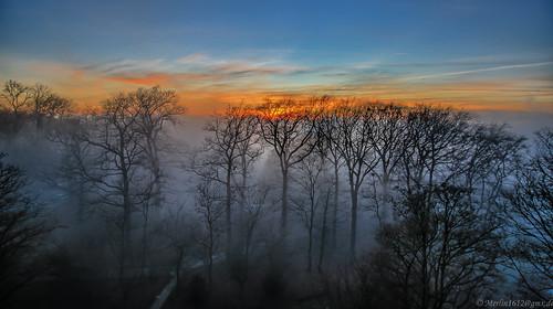 Nebel vom Boxberg