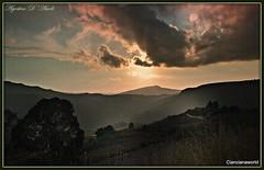 Paesaggio al tramonto - Aprile-2016 (agostinodascoli) Tags: travel sunset texture nature alberi landscape nikon tramonto nikkor sole piante turismo viaggi paesaggi sicilia cianciana