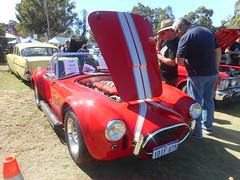 AC Cobra (Gunzelman) Tags: cars transport sportscars carpics carshows accobra americanmusclecars nikonpics australianmusclecars nikoncamerapics gunzelman carshows2016 wallyboyzshow2016