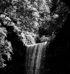 Silver Falls 016 Black and White