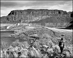 Ancient Lakes 2 (@GilAegerter / klahini.com) Tags: nikon nikkor nikkormat blackandwhite film 50mmf14ai seattle
