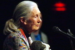 Jane Goodall at the Paramount Theater. (paramountbooth) Tags: theater paramount janegoodall