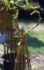 2016_04_10_st_jean_de_beauregar448 (Xavier_Claise) Tags: saint jean bokeh jardin fte horticulture dcoration ouverture plantes 135mm beauregard artisanat 2016 135mmf2 5dmarkiii