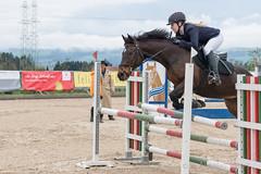 DSC08666_s (AndiP66) Tags: springen hildisrieden reitsportcenter estermann traselinge 2016 september pferd horse schweiz switzerland kantonluzern cantonlucerne concours wettbewerb horsejumping equestrian sports springreiten pferdespringen pferdesport sport sony sonyalpha 77markii 77ii 77m2 a77ii alpha ilca77m2 slta77ii sony70400mm f456 sony70400mmf456gssmii sal70400g2 andreaspeters luzern ch
