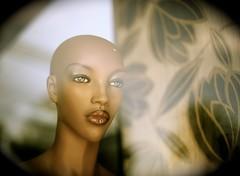Untitled (Steve Lundqvist) Tags: portrait people black mannequin window glass monochrome model eyes bokeh pov