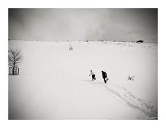 Un juego de no tan nios (Jaime Martin Fotografia) Tags: blackandwhite snow blancoynegro nature monocromo asturias
