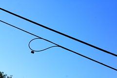 Loop (Noel C. Hankamer) Tags: blue light sky wire angle minimalist
