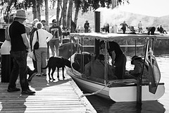 black dog and steamboat (Photoma*) Tags: jetty canberra steamboat