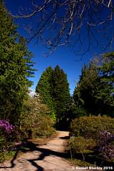 IMG_0135b (Autistic Photographer, Birmingham UK) Tags: weather gardens scotland amazing edinburgh place royal what botanic visiting today